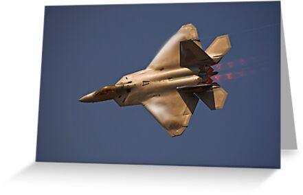 F-22 Raptor by Andy Mueller