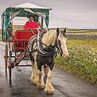 Jaunting with Johnny Cash by TonyCrehan