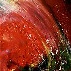 Nebula by gracekim1185