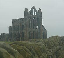 whitby abbey 5 by Wrigglefish