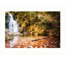 Autumn waterfall at Navarre in Spain Art Print