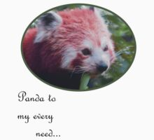 Panda to my every need.... by Tanya Housham