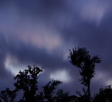 Trees and clouds and time by Paul Doucette