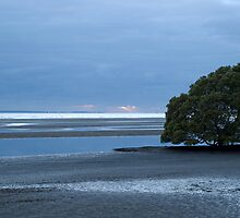 Dawn at Nudgee Beach by Judy Harland