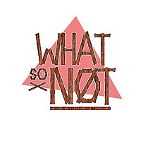 What So Not Logo by mhaidiArt