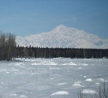 Mount McKinley Alaska from the Railroad  by fennam