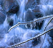 Winter Water I by Chris Clark