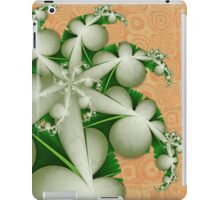 On A Cool Spring Morning iPad Case/Skin
