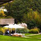 restaurant in the grass by terezadelpilar~ art & architecture