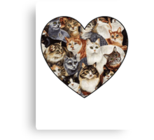 All The Kitties Canvas Print