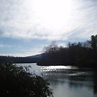 Price Lake, North Carolina by Johanna  Rutter