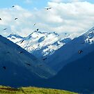 A Murder Of Crows & Mountains - Wallowa County, OR by Rebel Kreklow