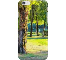Contrasted Nature - Royan, France. iPhone Case/Skin