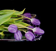 Purple on Silver by Maria Dryfhout