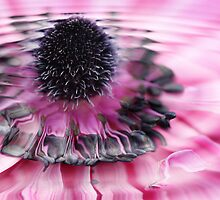 water flower by justjulie