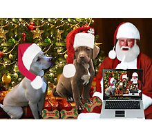 ☆ ★PRECIOUS MIRACLE ON PAWS- APBT- (DOGS) WITH SANTA -PICTURE/CARD HO HO HO RUFF RUFF-JUST FINISHED MAKING BARKING DOG VIDEO TO THE TUNE OF JINGLE BELLS ENJOY HUGS ☆ ★ Photographic Print