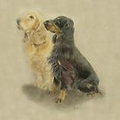 Bertie and Barny the cocker spaniels by Karie-Ann Cooper