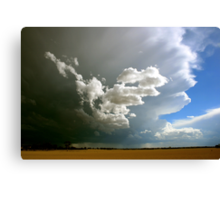 Get inside Ma...Storms a comin! Canvas Print