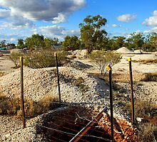 Lightning Ridge by Darren Stones