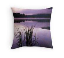 Twilight Glow Throw Pillow