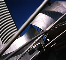 Gehry meets Standard by Arlene Zapata