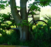 Vintage classical Bicycle against a tree by ronyzmbow
