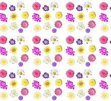 colorful flowers, pink, purple, yellow, white, rose, daisy, gardenia, etc. by naturematters