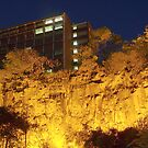 Looking up at the Mighty Kangaroo Point Cliffs. by aperture