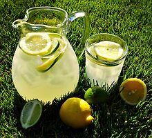 Summer Lemonade by Karin  Hildebrand Lau