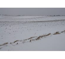 Fertile Farm Fields Sleeping Under the Snow Photographic Print