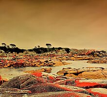 Bay Of Fires 1 by wallarooimages