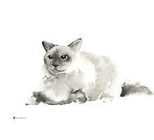Grumpy cat watercolor art print painting, cat home decor by Joanna Szmerdt