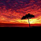 Heavenly Sunrise by Josh Meggs