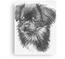 Cheeks Canvas Print