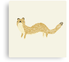 Fluffy Weasel Canvas Print