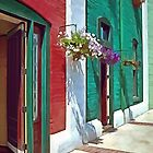 Roanoke VA - Doors and Hanging Baskets by Susan Savad