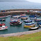 Safe Harbour at Coverack  by hootonles