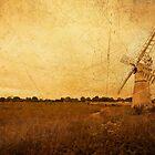 Thurne Wind Pump  by Rob Hawkins