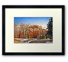 Change of Seasons Framed Print