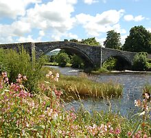 Llanrwst Bridge 2 by JImage