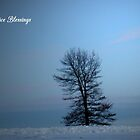 Solstice Blessings #3 by WildThingPhotos