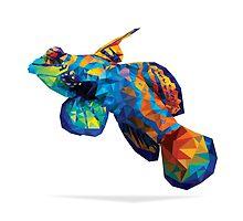 Geometric Reef Creatures by AquanautStudio