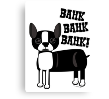 Boston Accent Terrier Canvas Print