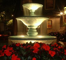 The Fountain by Kevin Price