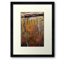 Mirror Mirror in the Water Framed Print
