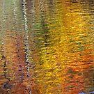 Autumn's Magic by Terri~Lynn Bealle