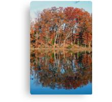 Autumn Narcissus Canvas Print