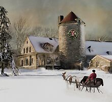 One horse Open Sleigh by Robin-Lee