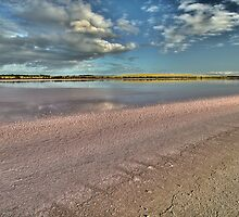 Pink Salt by smylie
