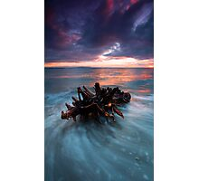 Adrift Photographic Print